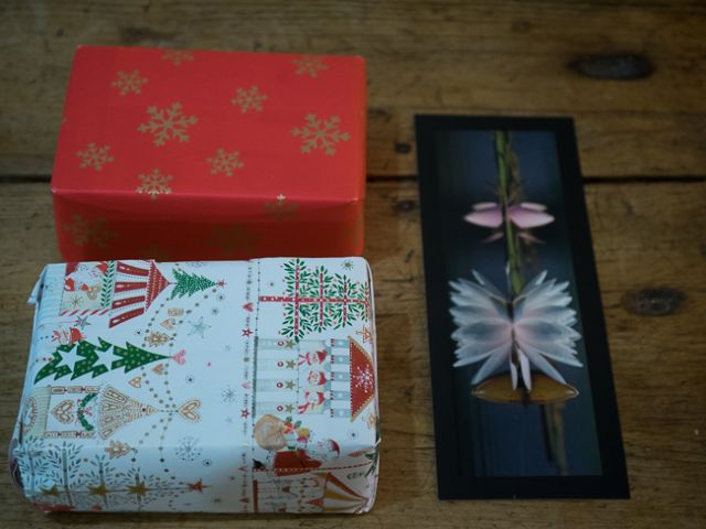 Eurydices-gifts-2-of-3.jpg