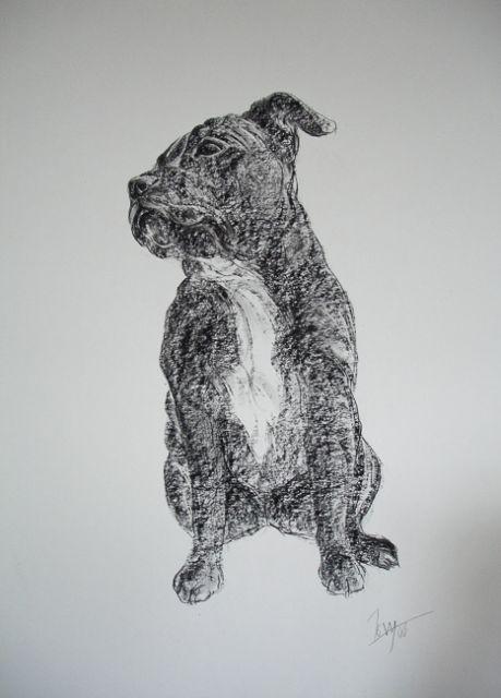 Else-drawings-1-of-2.jpg